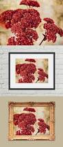 Photography Home Decor 106 Best My Floral Fine Art Photography Images On Pinterest