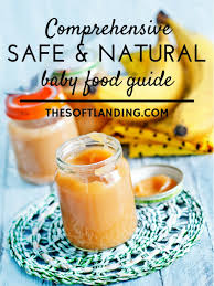 comprehensive safe and natural baby food guide the soft landing