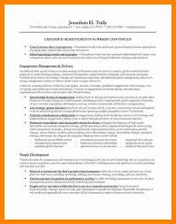 Executive Summary Example For Resume by 11 Career Summary Example Resume Sections