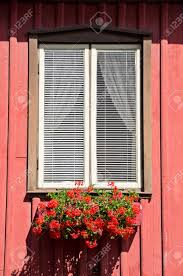red flowers in the window box of a typical swedish home stock