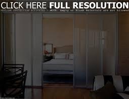 glass dividing doors fleshroxon decoration