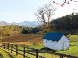 Where Is Chip And Joanna Gaines Farm Watch This North Carolina Family Farm Is Growing Some Of The Best