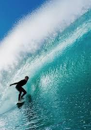 thanksgiving surf all season adventurer the best trips for all seasons