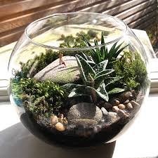 mini terrarium u2014 crafthubs