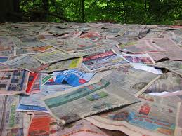 What Kind Of Mulch For Vegetable Garden by Newspaper Mulching