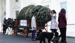 behind the scenes of christmas at the white house wavy tv