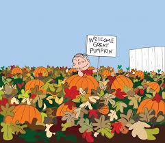 chilliwack corn maze u0026 pumpkin farm