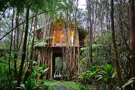 house crush an off the grid hawaiian treehouse for a dream vacation