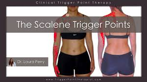 How To Palpate Subscapularis The Scalene Trigger Points Upper Body Troublemakers