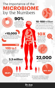human microbiome how it works a diet for gut health