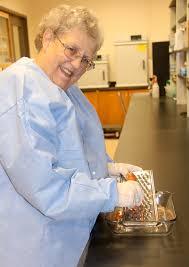 kitchen utensils can spread bacteria between foods uga study