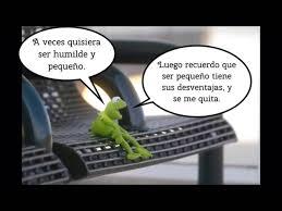 imagenes groseras rana rene memes rana rene cuba memes pics 2018