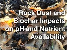rock dust and biochar impacts on ph and nutrient availability in