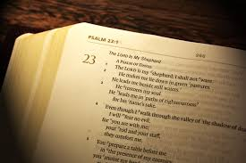 psalms about thanksgiving book of psalms introduction poems for hurting hearts