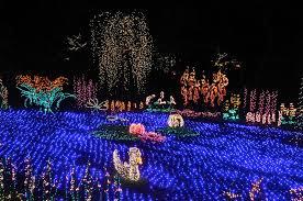 Botanical Garden Bellevue Seattle Japanese Garden Community Other Gardens Bellevue