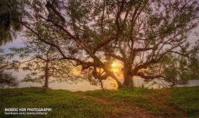 tutorial fotografi landscape momoc hdr photography hdr fotografi tutorial bahasa malays flickr