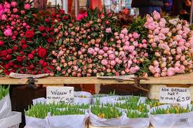 tulip bouquets haarlem the netherlands june 20 2015 flower shop with