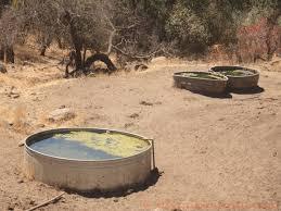 low volume water pump solar pump drycrikjournal