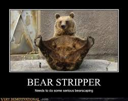 Stripper Meme - bear stripper very demotivational demotivational posters