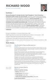 Business Development Resumes Vice President Of Business Development Resume Samples Visualcv
