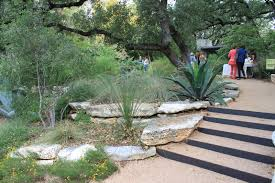 native texas landscaping plants rock oak deer open days austin garden tour christine ten eyck