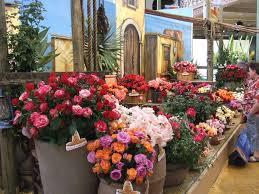 melbourne international flower garden show march 2017