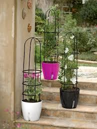 waterease self watering planter with obelisk support gardeners com