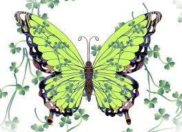 butterfly coloring pages download free butterflies color