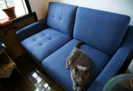 pet friendly and easy to assemble burrow sofas cool hunting