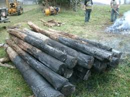 black locust posts draftwood forest products
