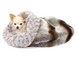 Doggy Beds Dog Beds La La Doggy Funnyfur Com U0027s Pet Style Trends For The