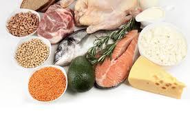 alimentazione ricca di proteine la ricerca delle proteine di maurizio de pasquale