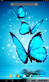 wallpapers of glitter butterflies butterflies glitter wallpaper livewallpaper io