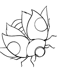 unique lady bug coloring page pefect color boo 3566 unknown