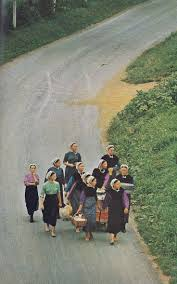 358 best amish images on pinterest amish country amish culture