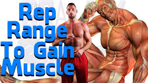 Bench Press For Size How Many Sets And Reps To Build Muscle For Size Mass Strength