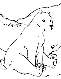 free printable polar bear coloring pages kids