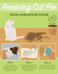 flooring remarkable how to remove black urine stains from