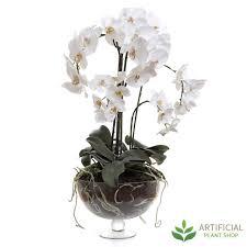 70cm Vase Phal Orchid In Decorative Glass Vase 70cm