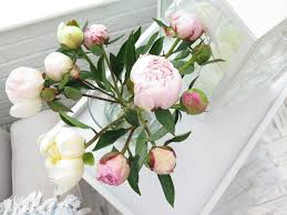 Floral Food by How To Get Free Freddies Flowers Jinksybeauty
