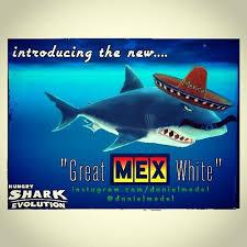 hungry shark map best 25 descargar hungry shark evolution ideas on