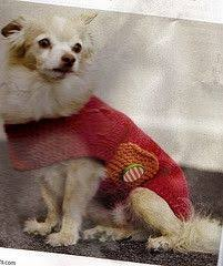 free crochet dog sweater patterns dog lovers gifts crochet