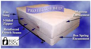 bed bug mattress and box spring encasements bed bugs regional pest management
