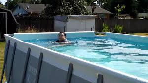 Intex 14 X 42 Intex Swimming Pool Hd Youtube