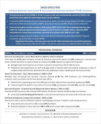 Account Executive Resume Sample by Incredible Account Executive Resume Samples