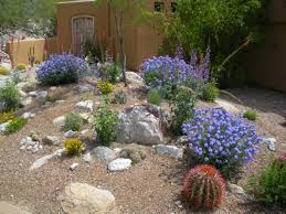 awesome desert landscaping ideas at garden bombadeagua me