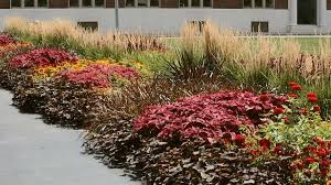 sensational idea shade garden designs ideas for an easy care shady