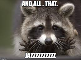 Racoon Meme - the meme ing of life jazz hands raccoon
