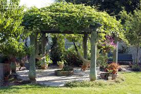 Garden Pergolas Ideas 40 Pergola Design Ideas Turn Your Garden Into A Peaceful Refuge