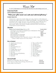 professional summary resume sle profile for resume
